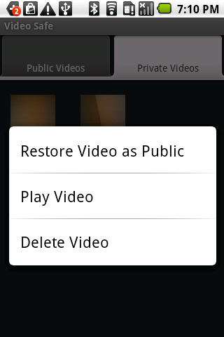 Video Safe License - screenshot