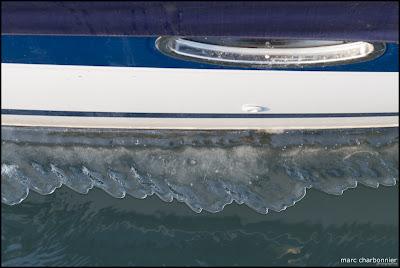 Lac Léman Genève - Glace-16.jpg