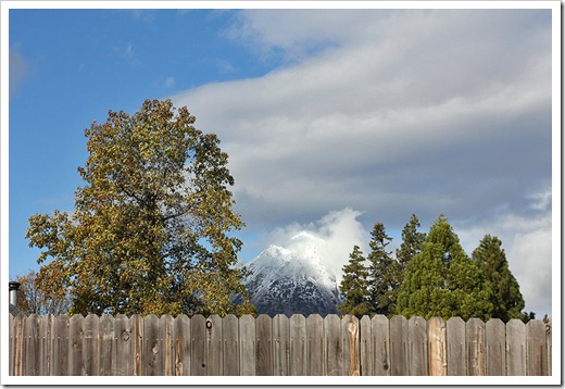 111124_blackbutte