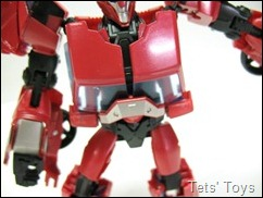 Cliffjumper (12)