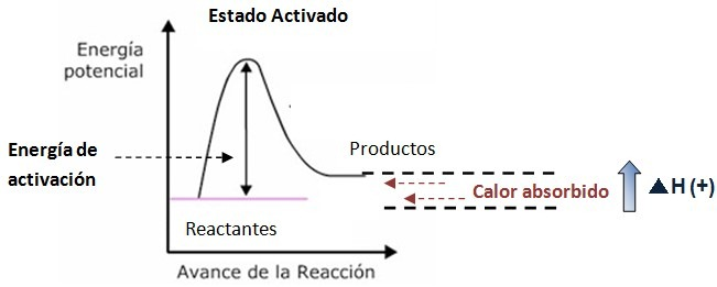 grafica de reaccion endotermica
