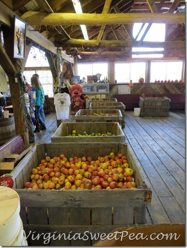 Apples at Johnsons
