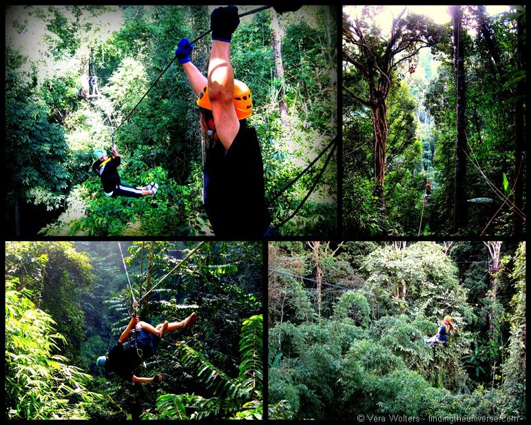 Flight of the Gibbon zip lining collage 2