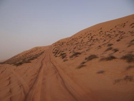 36. Urcare pe duna.JPG