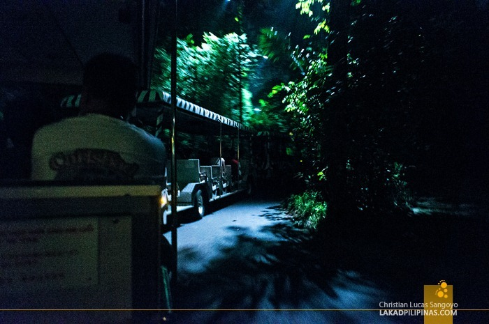 Moving by Tram at Singapore's Night Safari