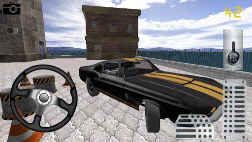 Araba Park Etme Oyunu 3D