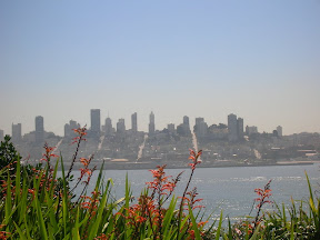 308 - Vistas de San Francisco.JPG