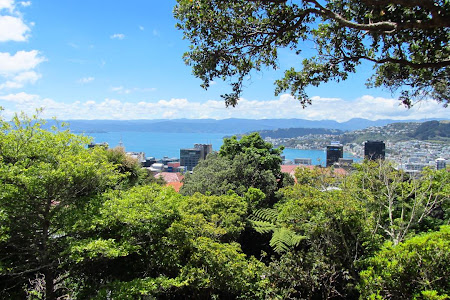 Obiective turistice Wellington: vazut din varful gradinii botanice