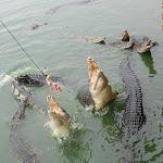 Тайланд 12.05.2012 5-59-45.jpg