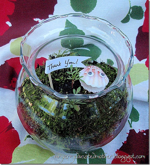Teacher Appreciation Terrariums