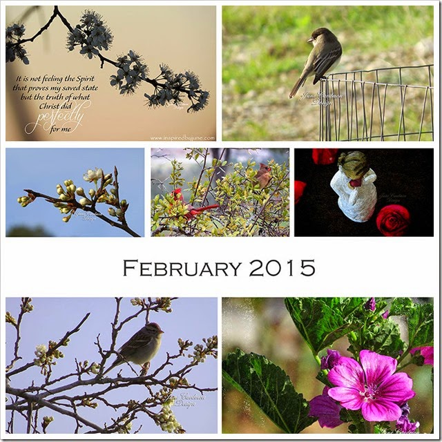 FEB_Collage