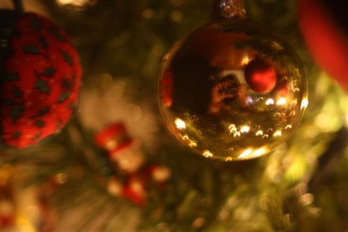 20081217 (1) (Small)