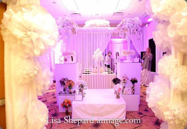 394733_268219289911424_1373791915_n  flora fetish Austin Wedding Show