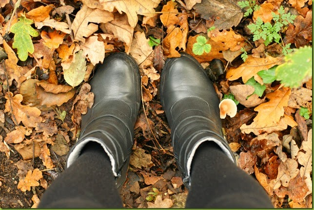 feet standing in leaves