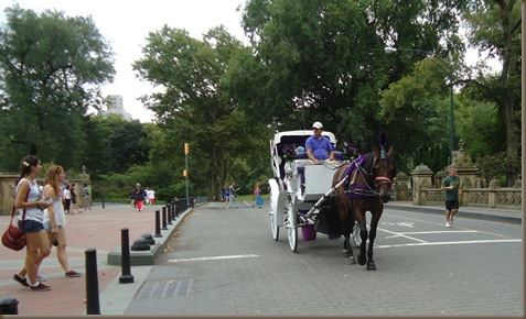 carriage central park