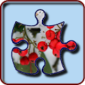 Drifting Jigsaw Puzzle icon