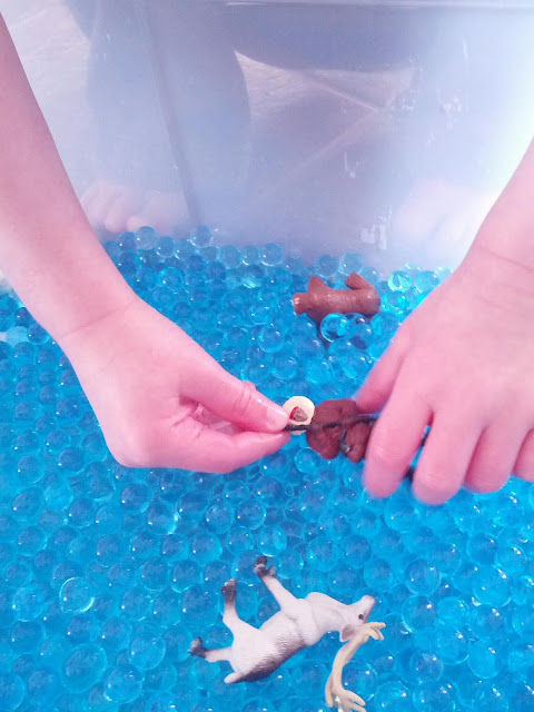 Figures in an arctic sensory bin