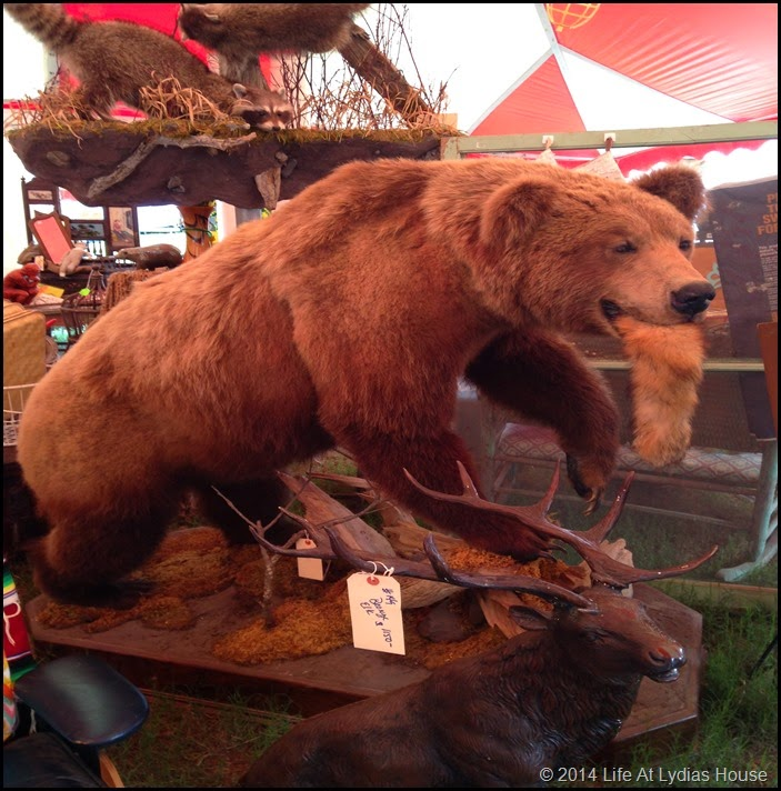 Taxidermy bear