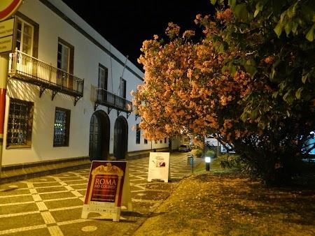 23. Punta Delgada noaptea.JPG