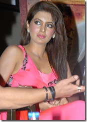 Geeta Basra Hot Pics at Zilla Ghaziabad Audio Launch