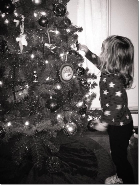 Cassidy and the Christmas tree