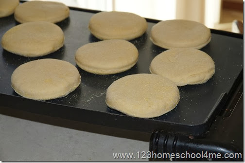 cook english muffins on griddle