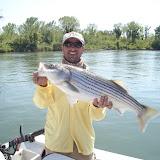 Fishing 019.jpg