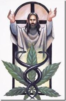 jesus and pot