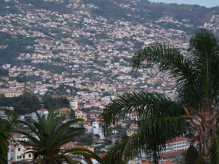 Imagini Madeira: Funchal vazut de sus