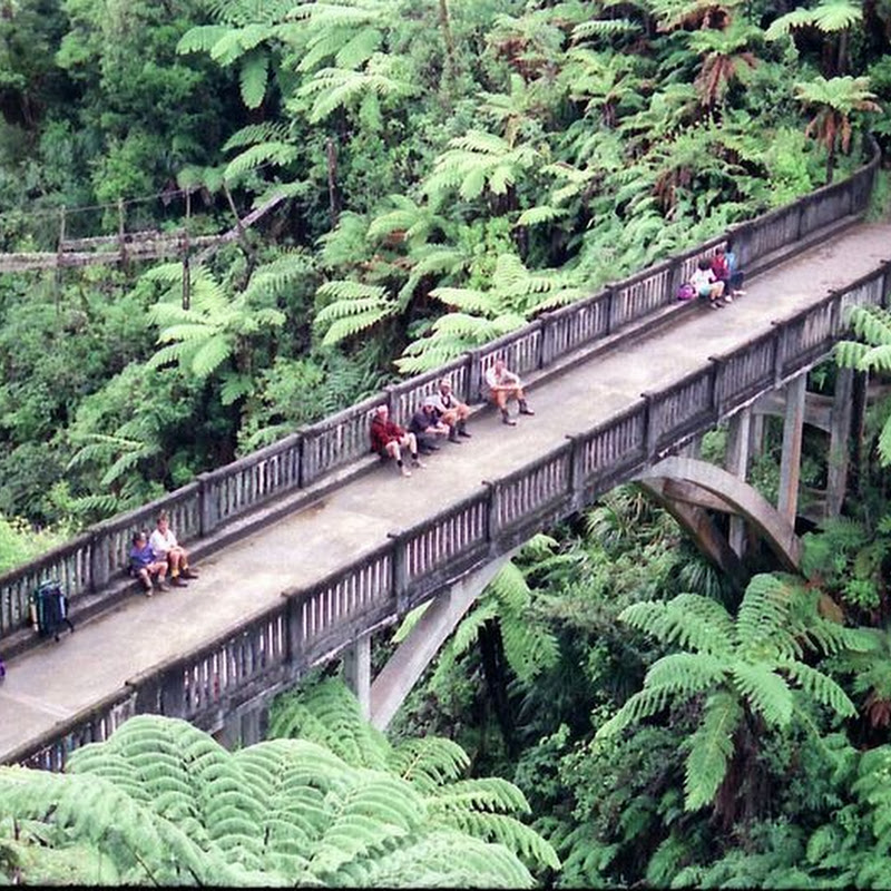 """Bridge to Nowhere"" in Whanganui National Park, New Zealand"