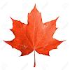 kanadianbakon