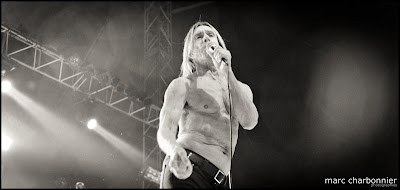 Iggy and the Stooges-2.jpg