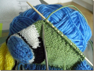 Pick up and knit wing