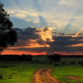 The Road to The Light by Hans-Erik Arp - Landscapes Sunsets & Sunrises ( sunset, god rays, sundown, cloudscape, sunlight, light, crepuscular rays, sun rays, colours, skyscape )