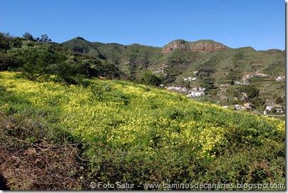 4911 Las Lagunetas-Los Arbejales
