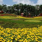 Тайланд 21.05.2012 8-06-24.JPG