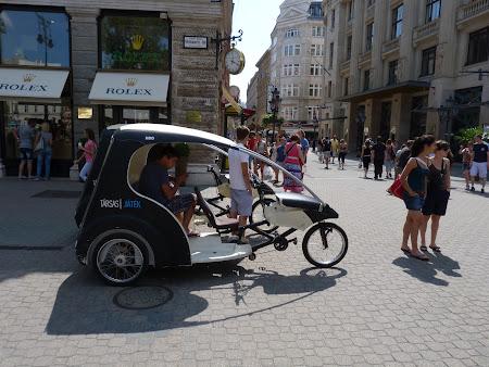 Obiective turistice Ungaria: ricsa in Budapesta