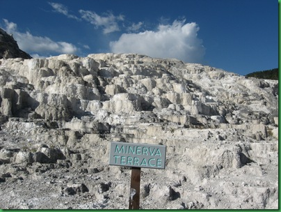 Mammoth Hot Springs Terraces (236)