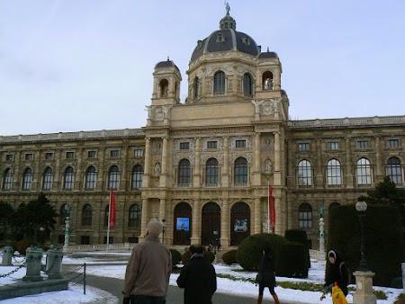 16. Muzeul din Viena.JPG