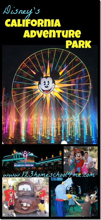 Disney California Adventure Park Review