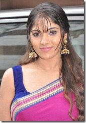actress_muktha_bhanu_in_saree_photo