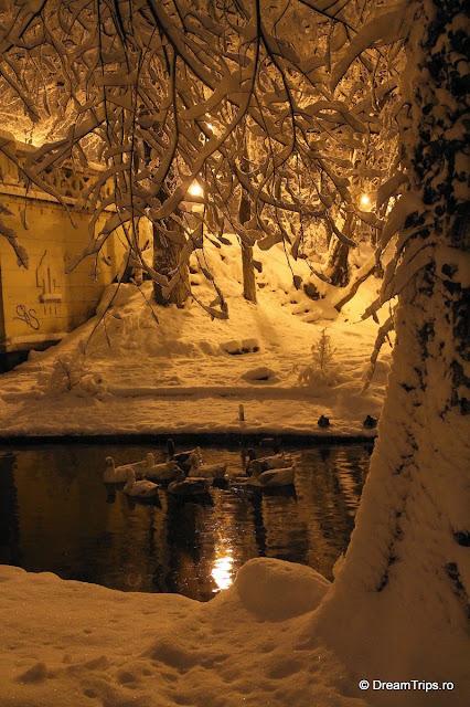 Noapte_de_iarna_1994.JPG