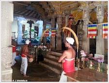 Барабанщики. Шри-Ланка. Фото Холоденина А. www.timeteka.ru