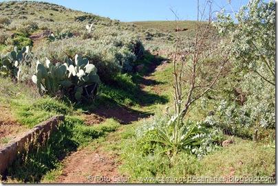 4940 Montaña Alta-Guía