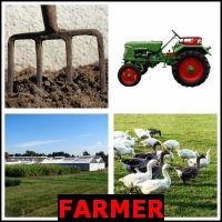 FARMER- Whats The Word Answers