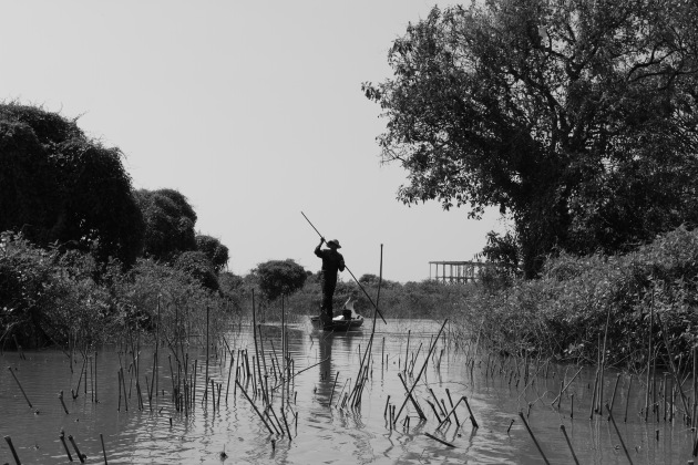 A moment from Kompong Phluk flooded forests