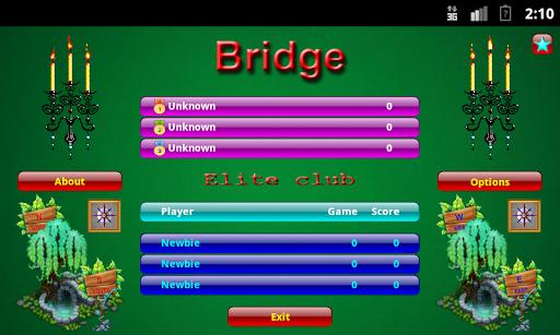 Бридж Bridge