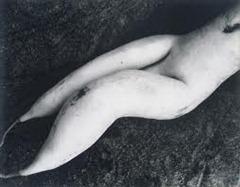 Edward Weston - Bulb 1933