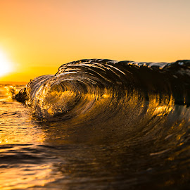 Golden Mini by Cameron Watts - Landscapes Waterscapes ( water, sand, waves, mindsurf, ocean, beach, fun, coast, sun, sunset, wave, sunshine, gold, surf, mindblowing, golden, mini, sold, Beach, blue, ocean.  )