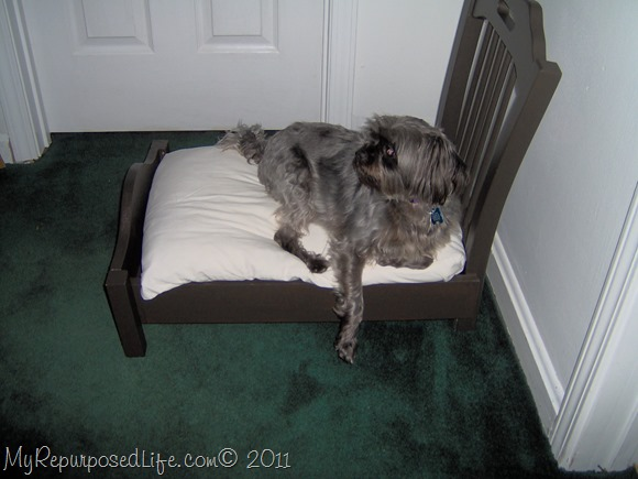 dog bed from chair